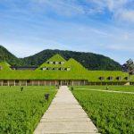 「建築×自然」SDGsを推進のために建築家にできること