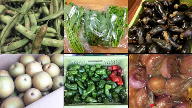 チバベジの野菜