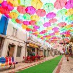 お年寄りが増える町で持続可能なまちづくりを<br>鳥取県日南町の挑戦